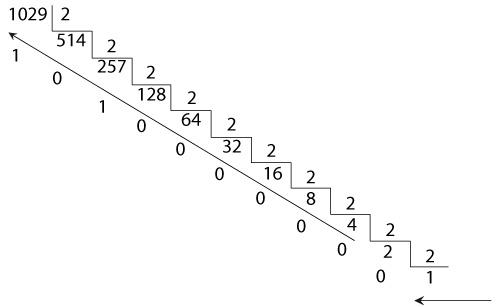decimal para binario